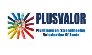 plusvalor_logo